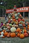 Country Living Fair; Stone Mountain, Georgia