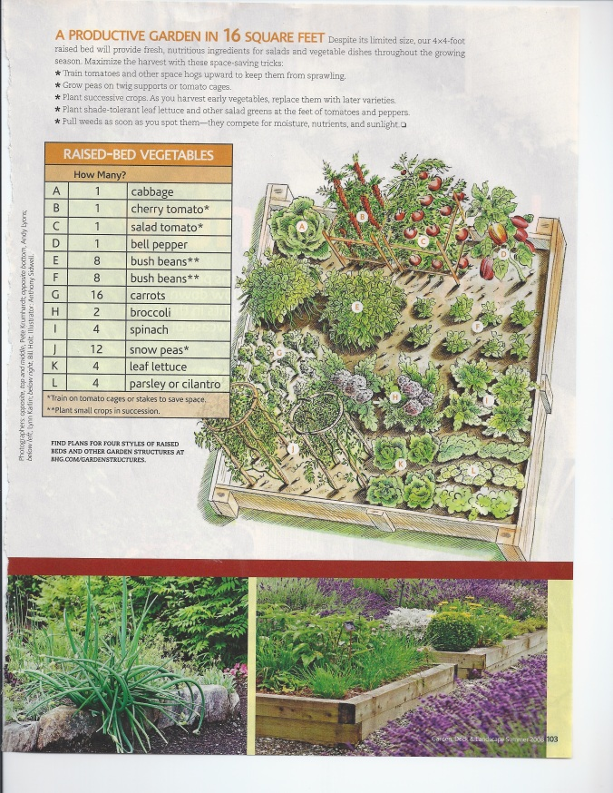 You can plant them however you see fit, but here are a few suggestions for a lush garden bed.