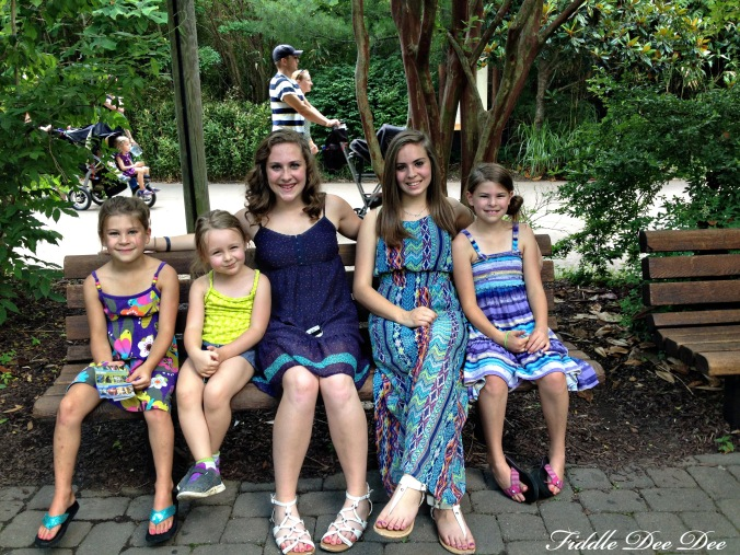 My girls and nieces ... aren't they all so beautiful?