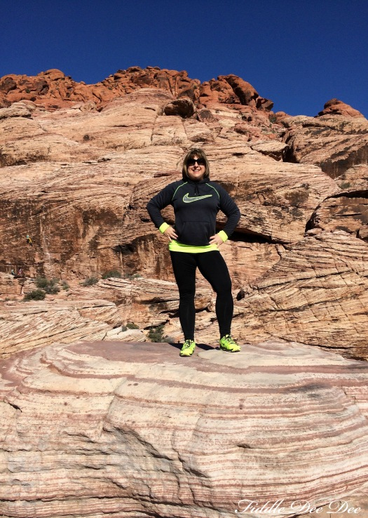 red rock canyon3