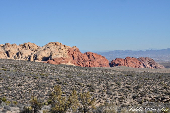 red rock canyon6