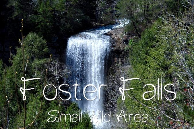 Foster Falls1