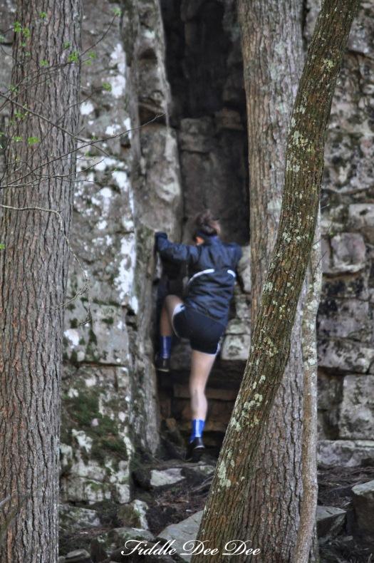 Free Climbing at Foster Falls