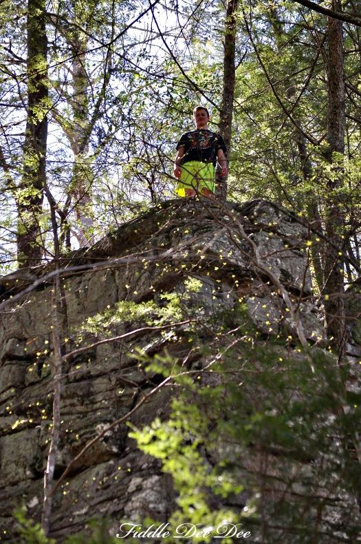 Free Climbing at Foster Falls2