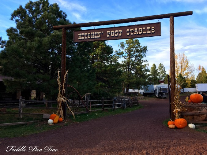 arizona-weekend-17-oh-fiddledeedee-com