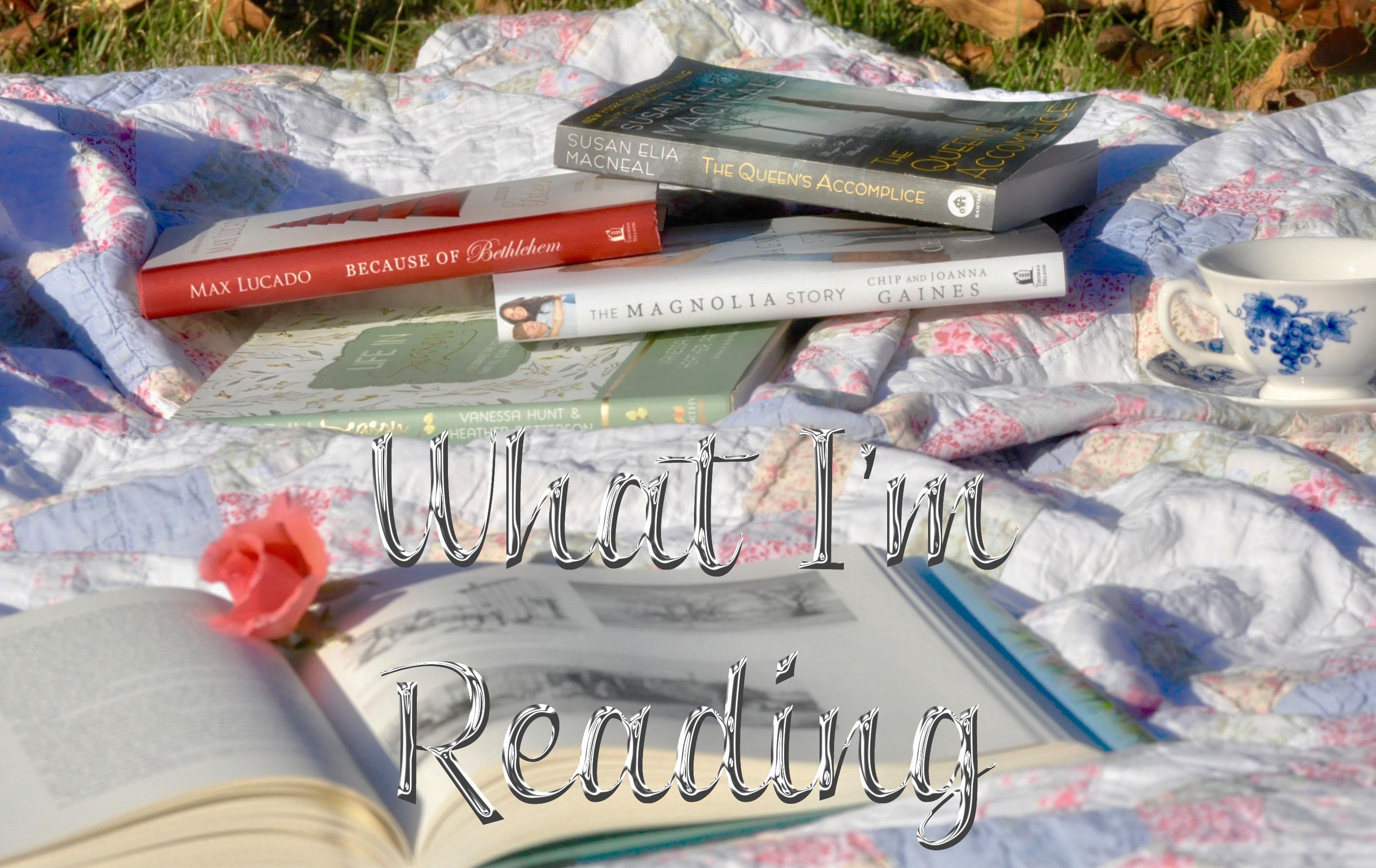 what-im-reading-3-oh-fiddledeedee-com