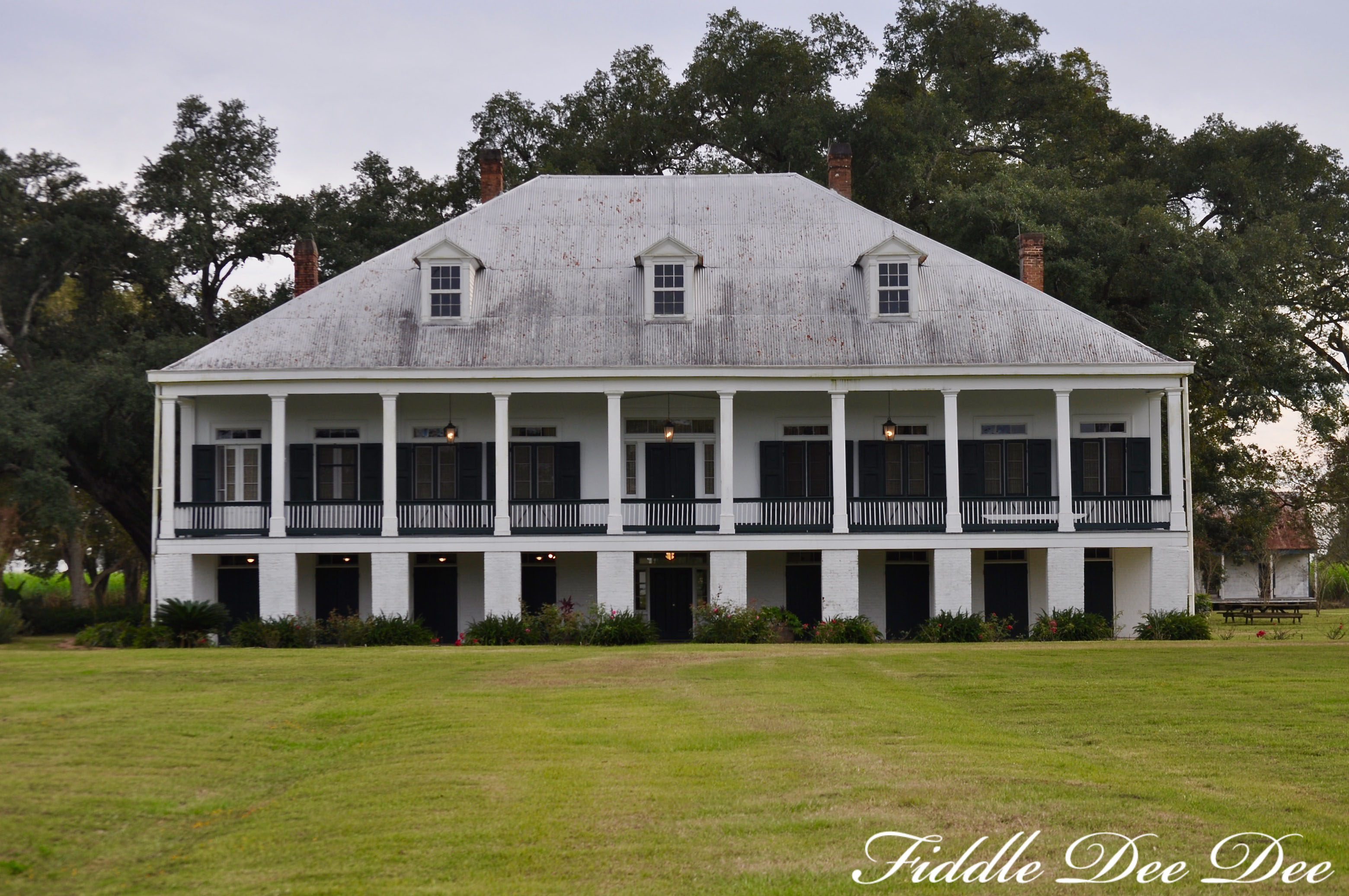 saint-josephs-plantation-ohfiddledeedee-com