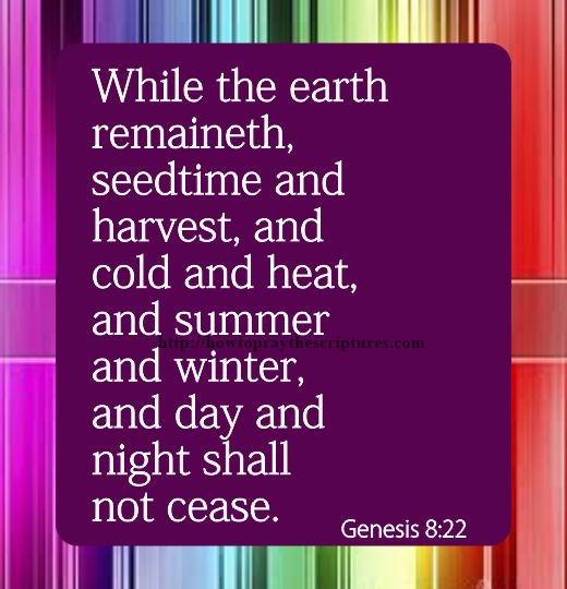While-The-Earth-Remaineth-Genesis-8-22