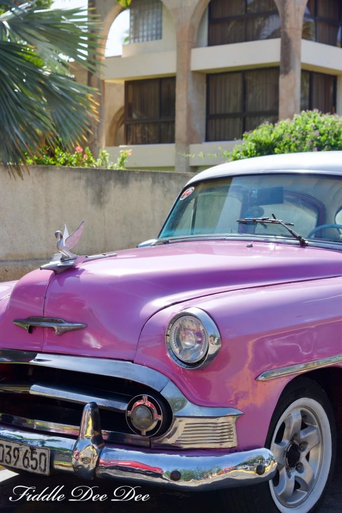 Cuban-Car-Show-6   Fiddle Dee Dee