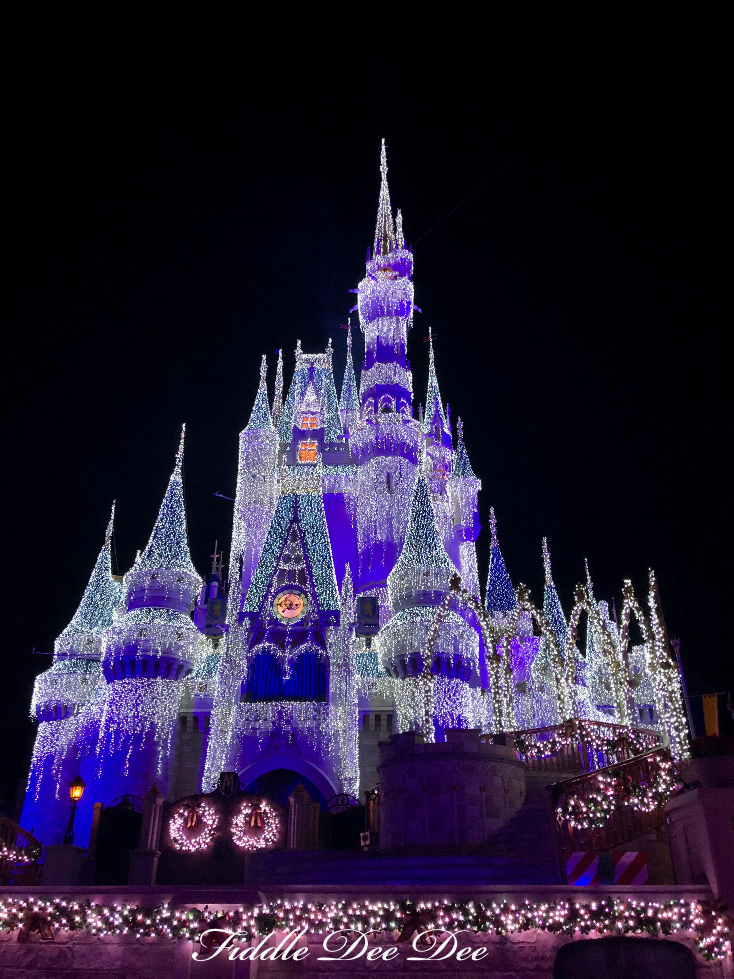 Cinderella-Castle-Lights | Fiddle Dee Dee