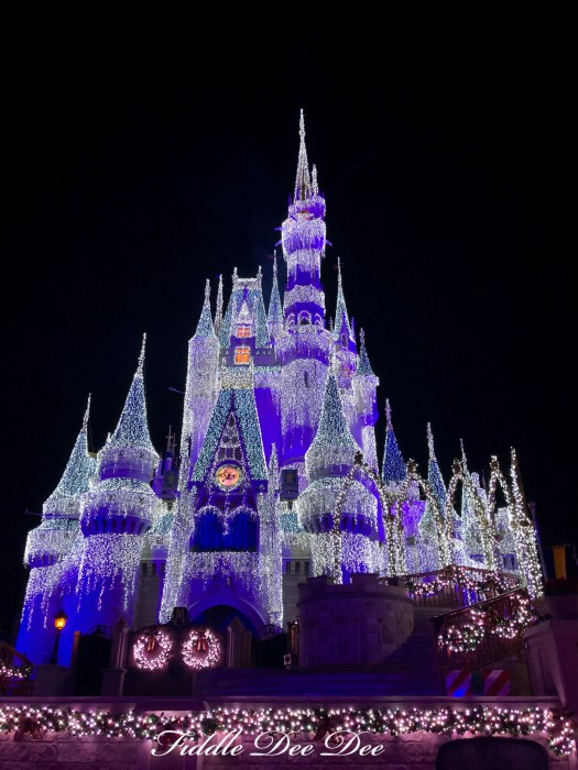 Cinderella-Castle-Lights | Fiddle Dee Dee