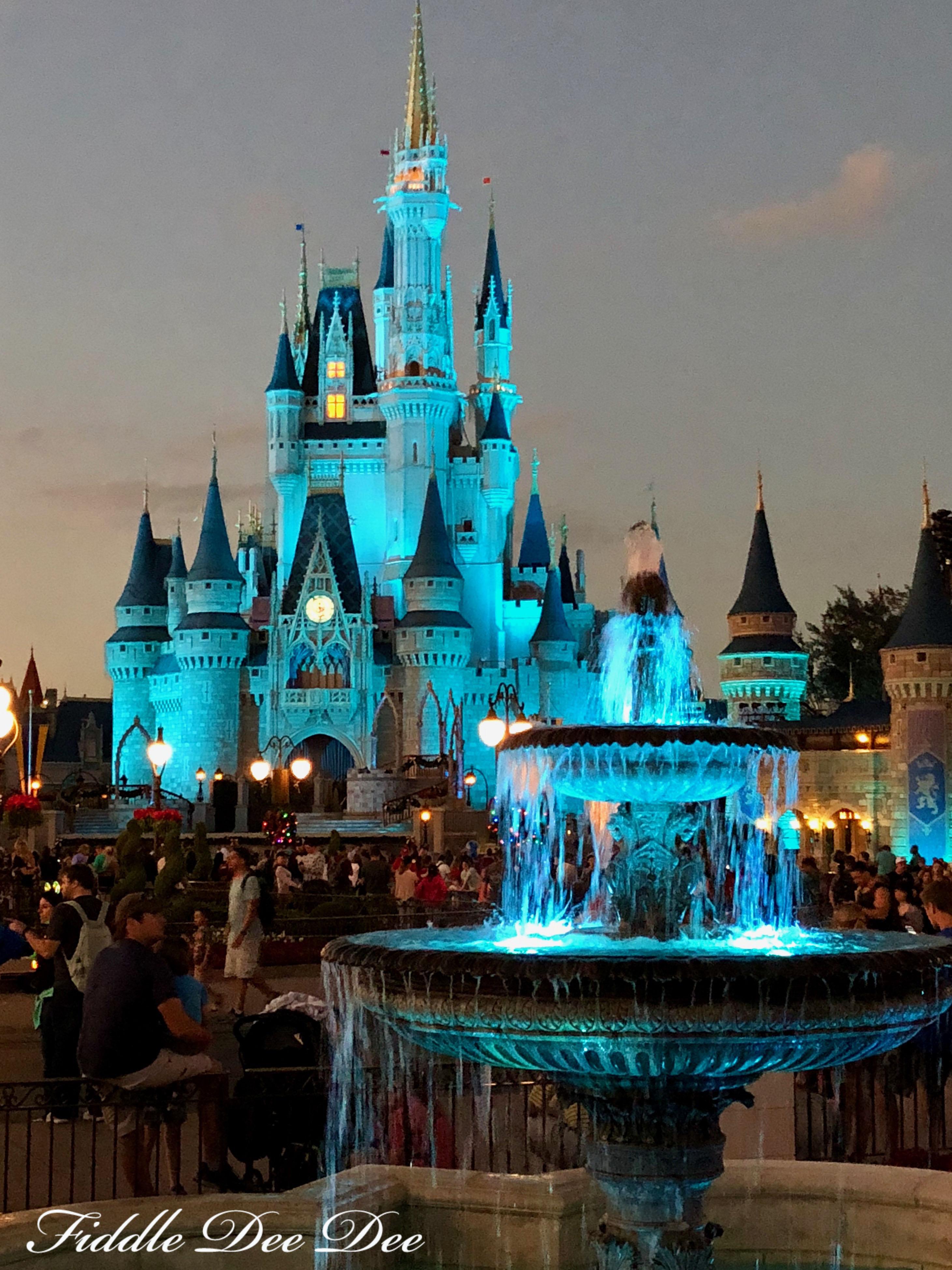 Disney-Magic | Fiddle Dee Dee