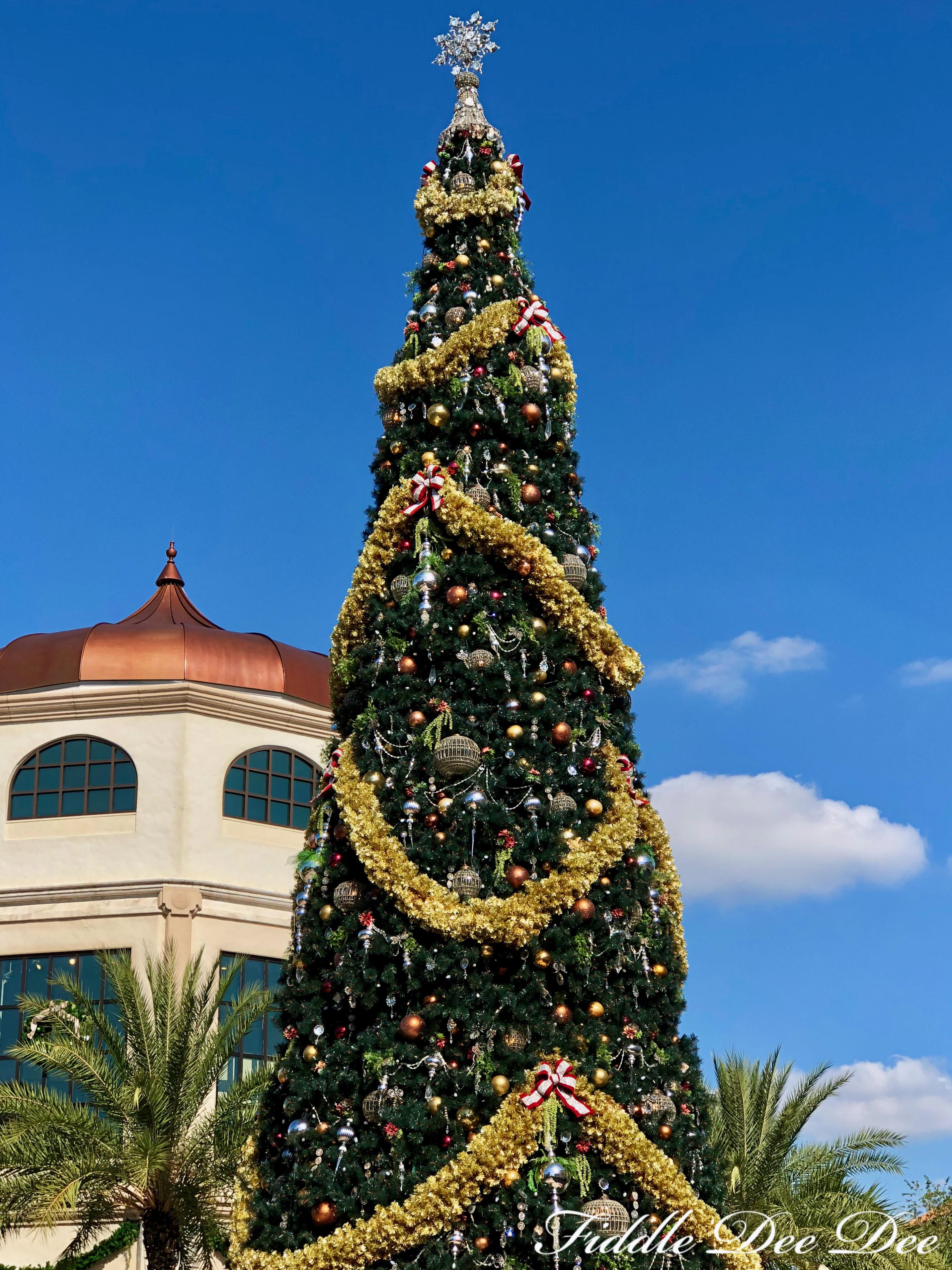 Disney-Springs-Tree | ohfiddledeedee.com