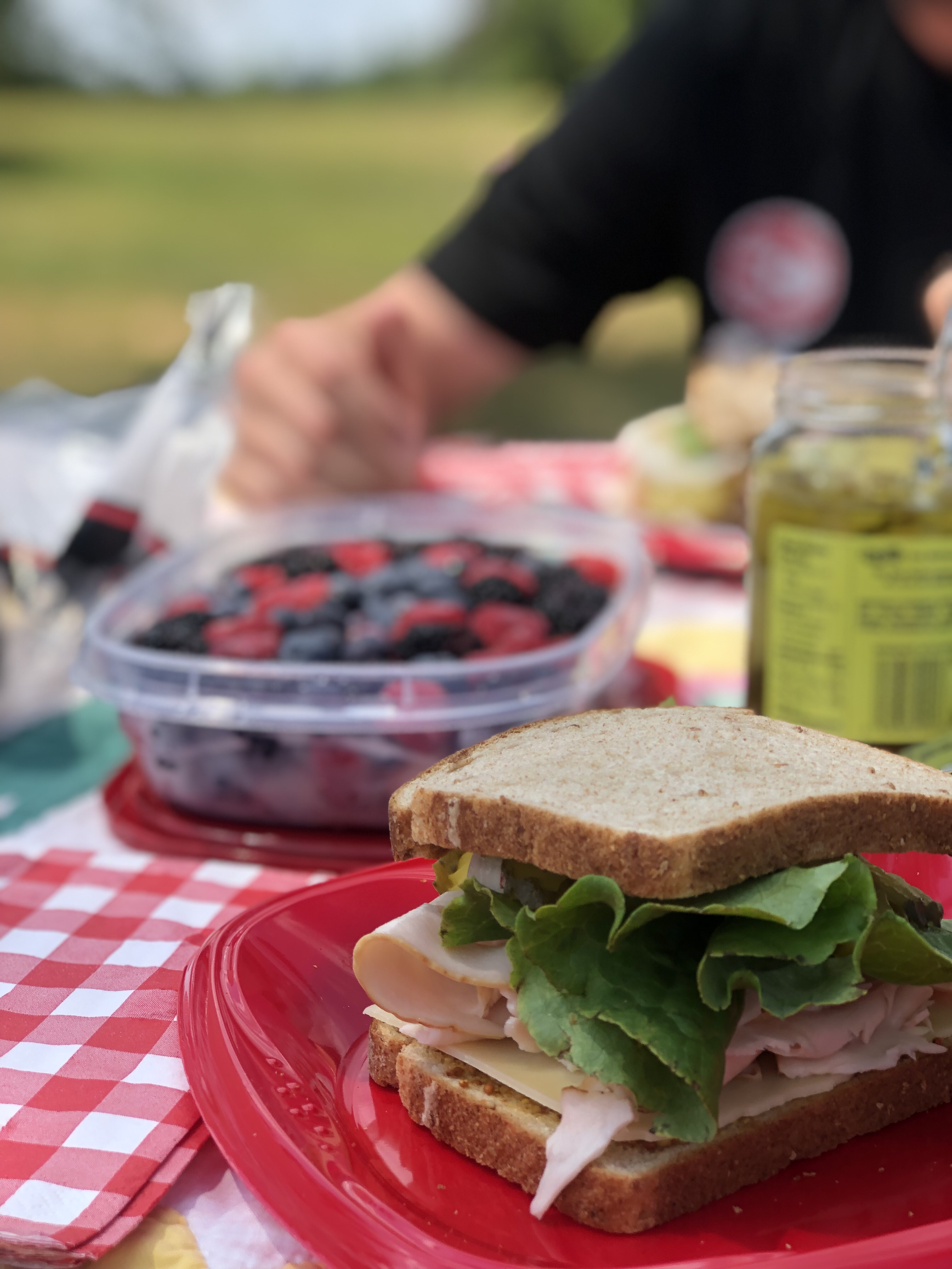 Providence Canyon Picnic / Oh FIddle Dee Dee