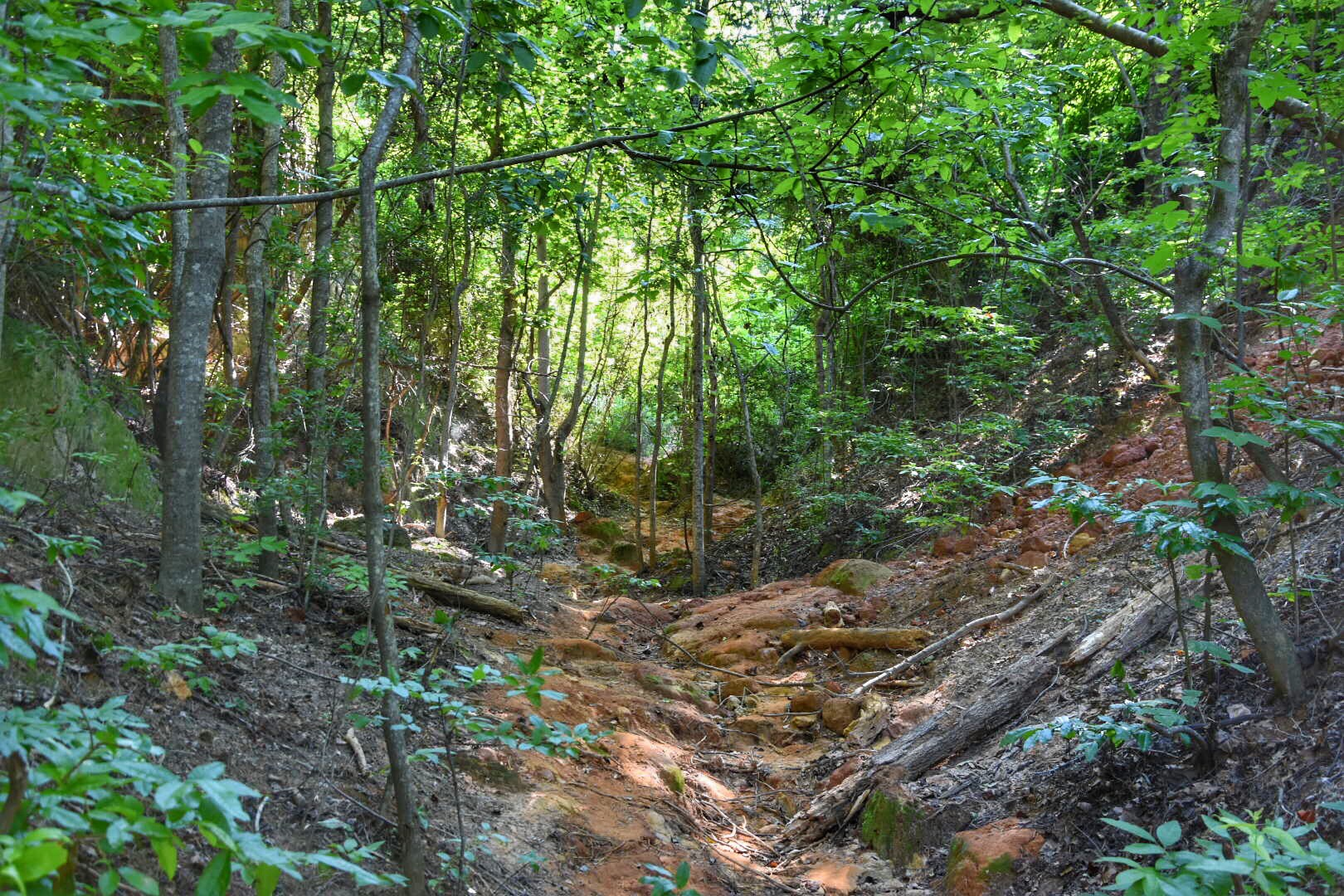 Providence Canyon Wooded Trails / Oh Fiddle Dee Dee