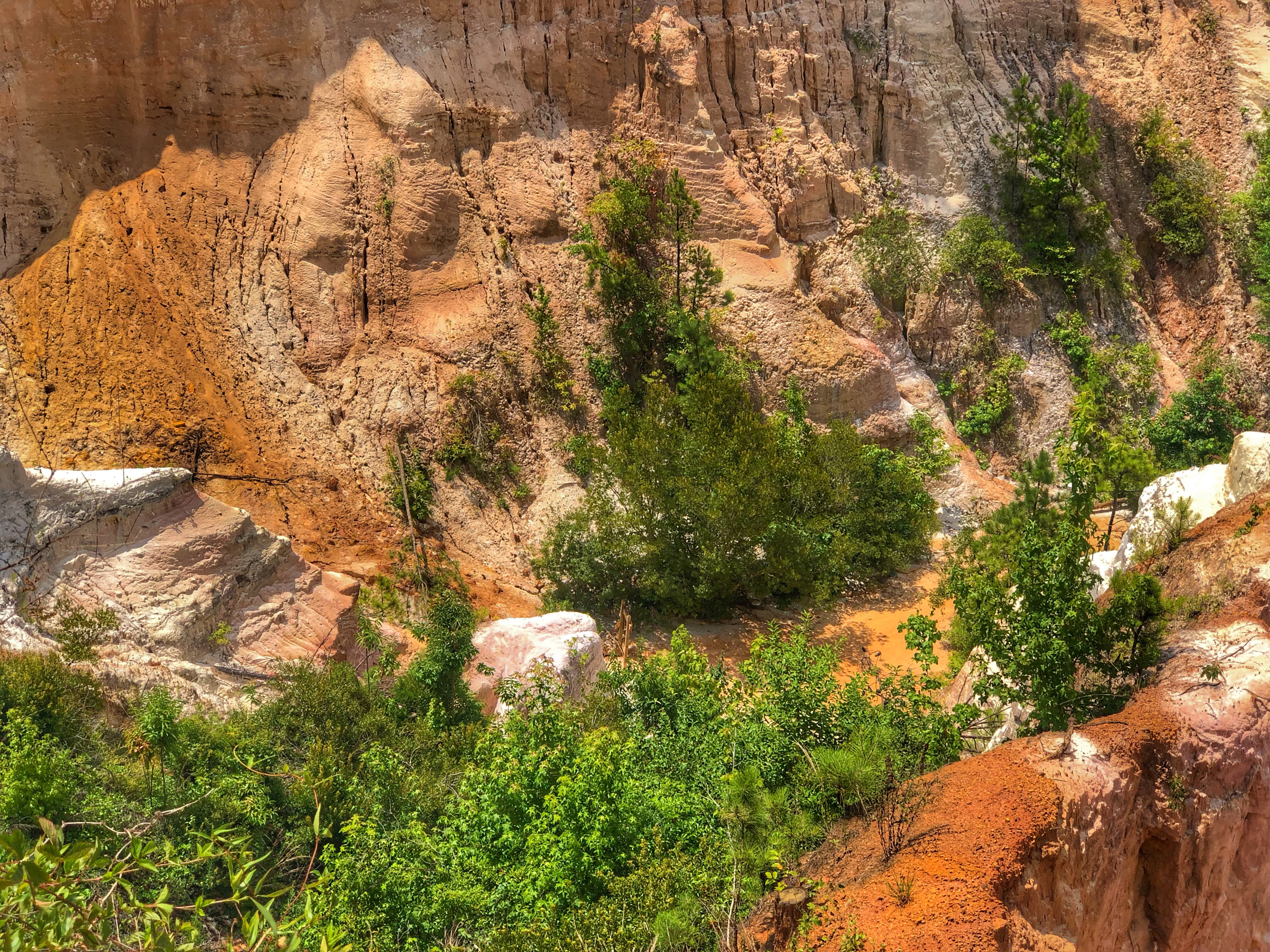 Looking down onto Providence Canyon Trails / Oh FIddle Dee Dee